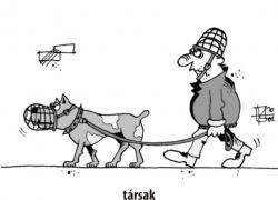 karikatura_galeria_32.jpg